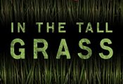 Online In the Tall Grass Audiobook
